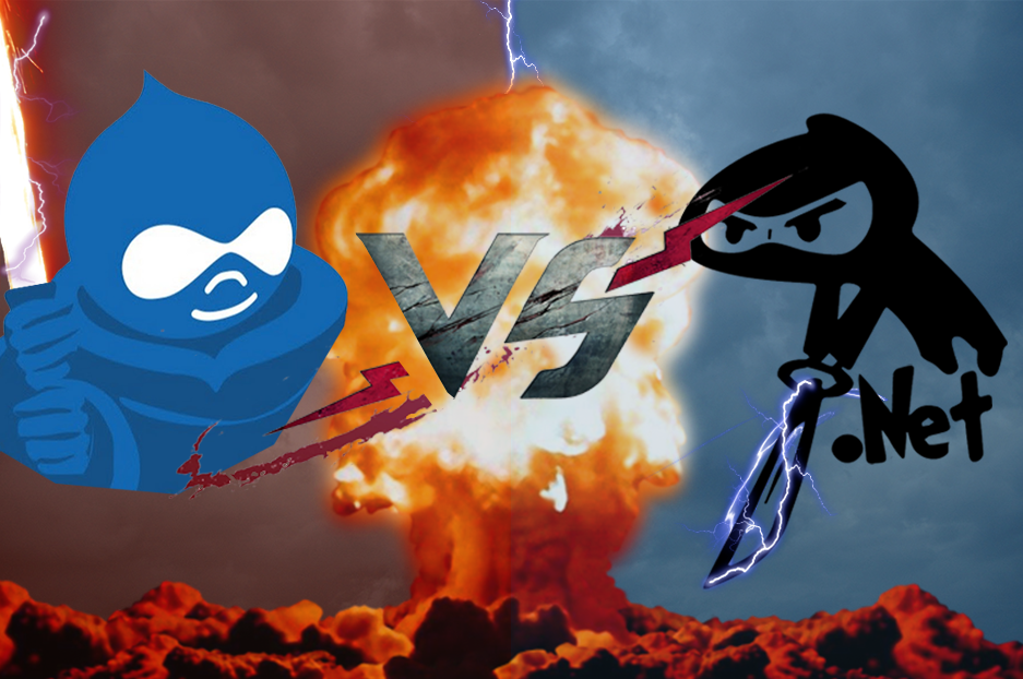 Drupal as CMS vs .NET based CMS: which one to choose for your web development?