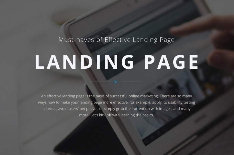 Must-haves of Effective Landing Page - Presentation